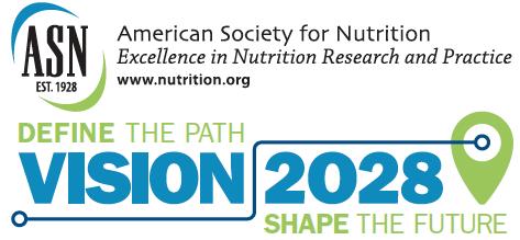 Vision 2028 Logo