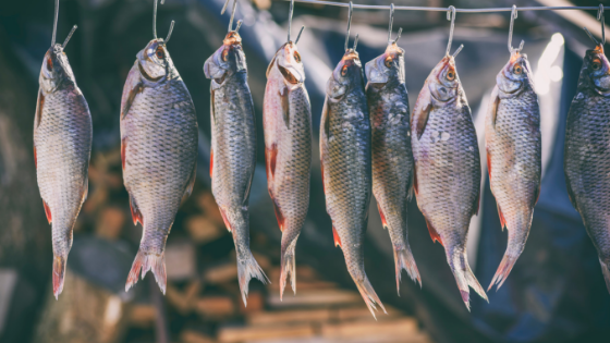 Is salted fish carcinogenic?