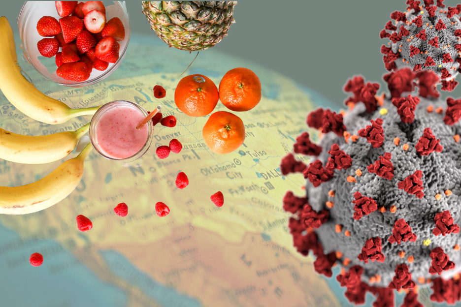 The Role Of Nutrition In Supporting The Immune System Relative To Coronavirus Covid 19