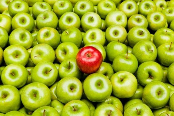 NIH and ASN See a Bright Future for Precision Nutrition