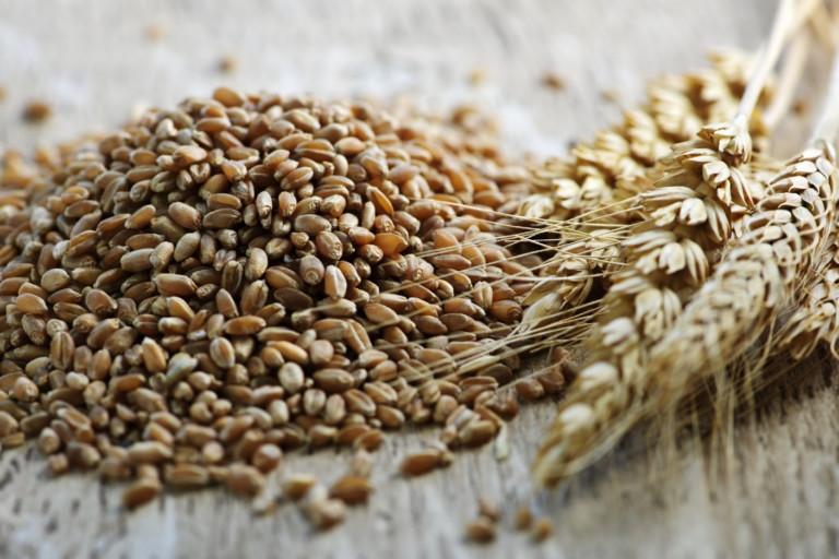 Habitual whole grain consumption benefits health